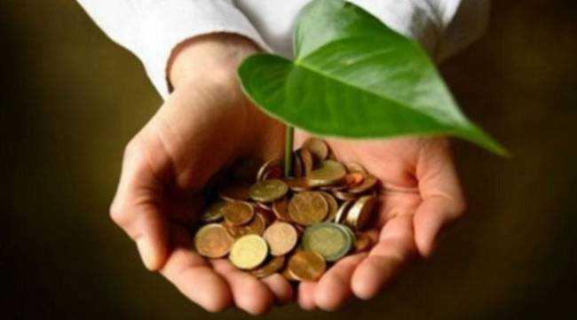 homem-segurando-moedas-e-planta